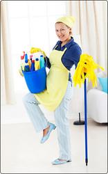 Уборщица,  домработница и домохозяйка на час в Туле!!!
